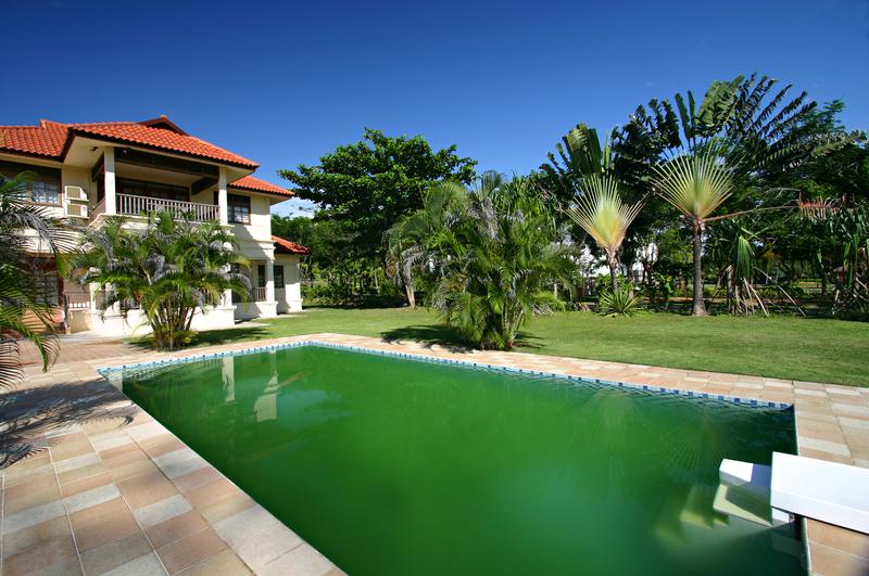 tratamento para piscina verde