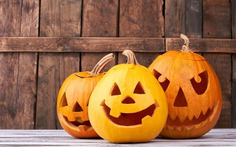Festa-de-Halloween-na-piscina-com-decoração-temática-hth-800x500
